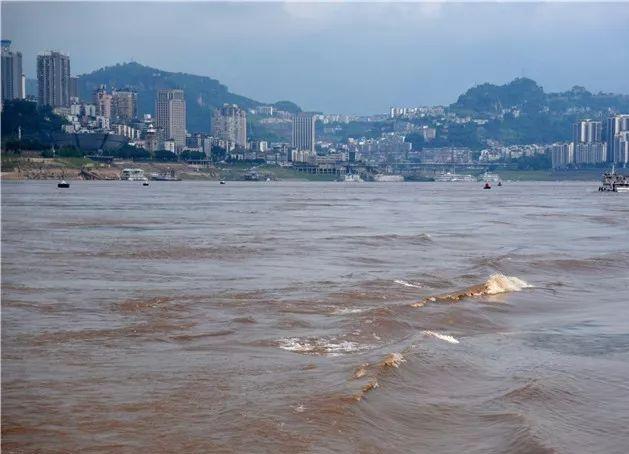 重庆洪峰过境,大叔坐家门口沙发上看海