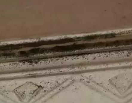 广西女租客清早起来发现天花板滴血!警方回应:确认楼上住户死亡